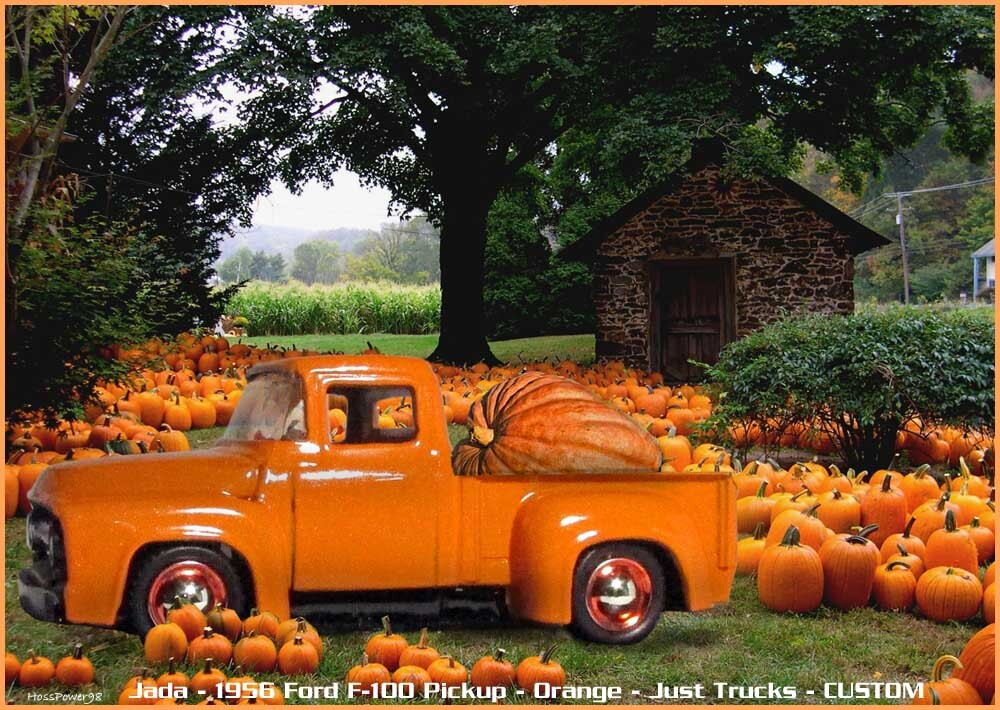 Click image for larger version  Name:	qqpumpkinpatch.jpg Views:	3 Size:	197.9 KB ID:	5457